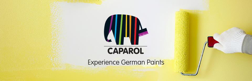 Image result for banner caparol